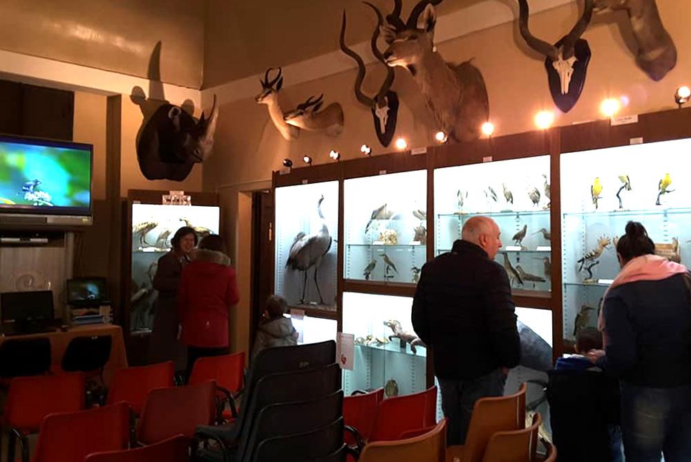 Museo Storia Naturale Macerata